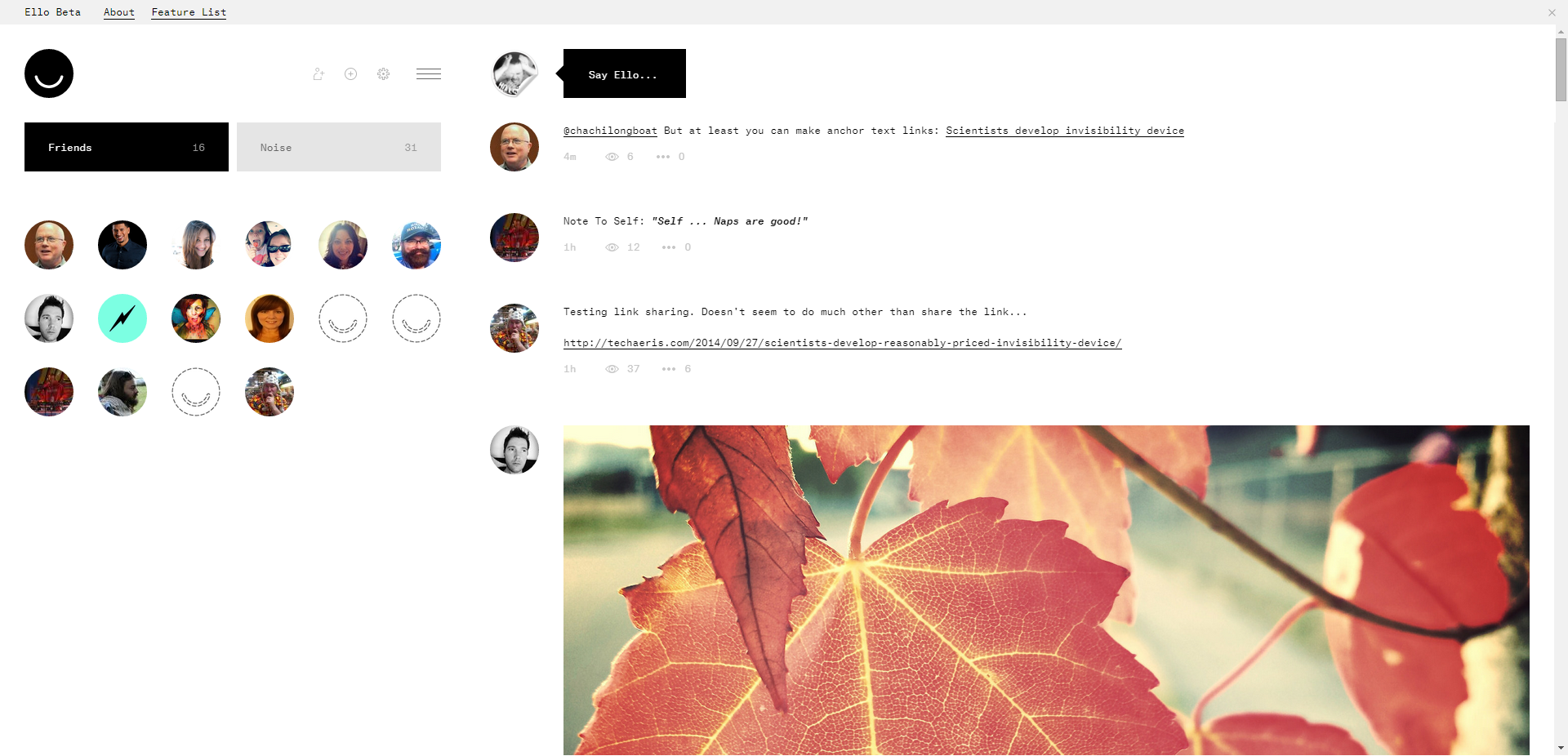 Ello-Friends-List-Screenshot