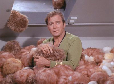 Captain Kirk, surrounded by Tribbles.