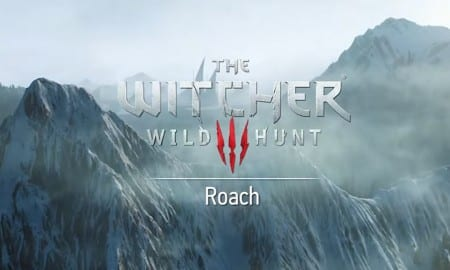 The-Witcher-3-Roach-DLC