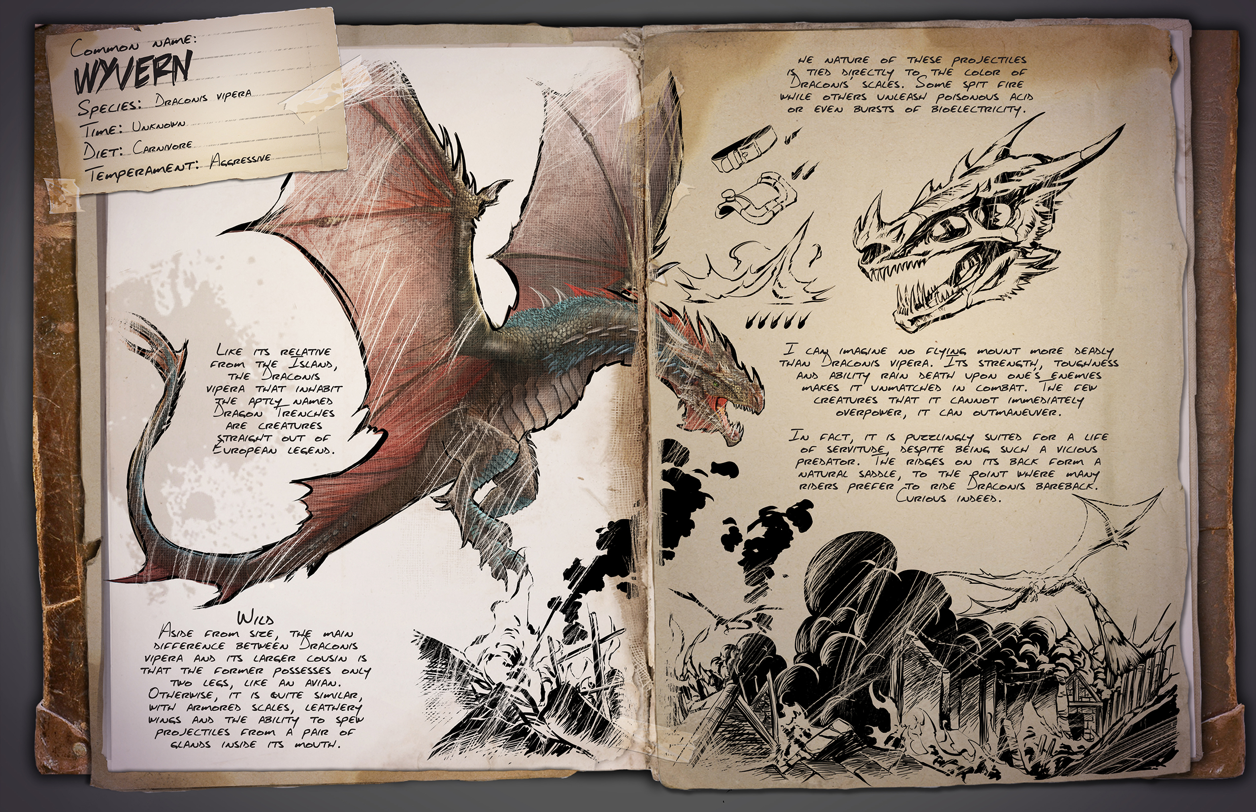 Dossier Wyvern ark survival evolved scorched earth