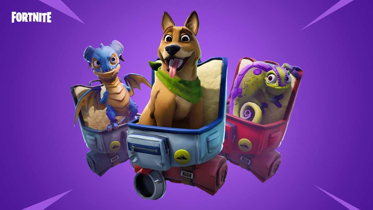 Fortnite-Season-6-pets